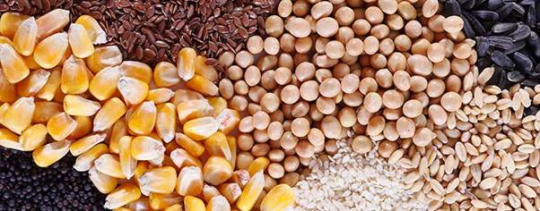 Commodity Trading 11 Unique Commodities Traded In Market