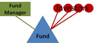 Fund Manager Risk - Mutual Fund